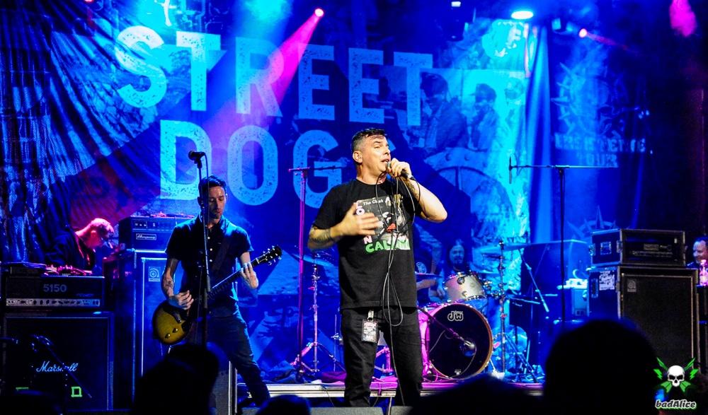 Streetdogs12