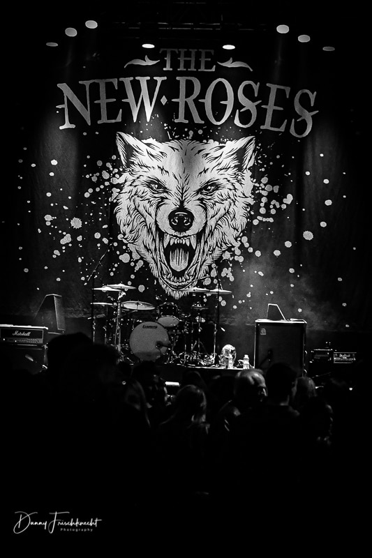 the-new-roses-@-z7-19-1